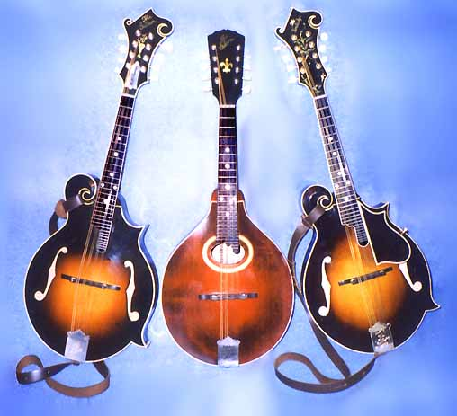 Three Mandolins